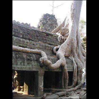 reise thailand kambodscha vietnam